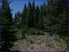 .95 Acres California Land