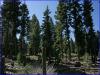.91 Acres California Land
