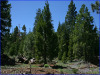 .92 Acres California Land