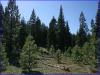 California Land, .92 Acres