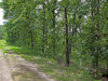 3 Acres Missouri Land