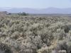 .99 Acres Washington Land
