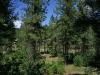 .28 Acres Colorado Land