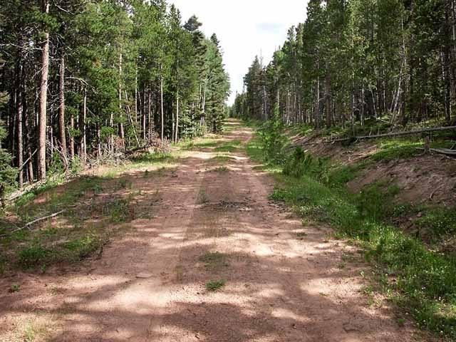 3.0 Acres of Cheap Colorado Land
