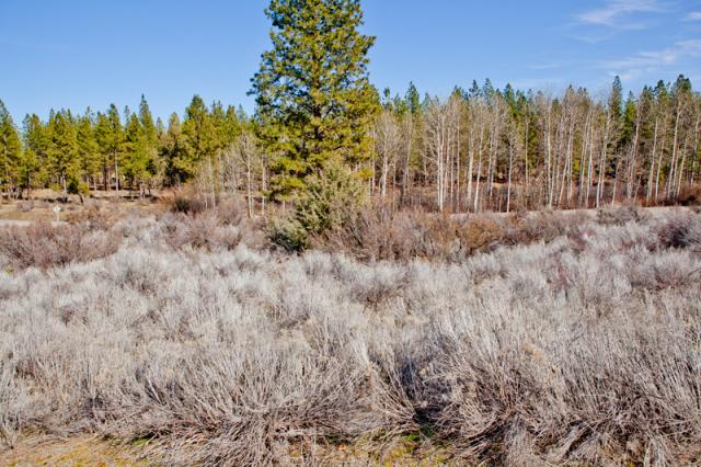 0.30 Acres Oregon Land